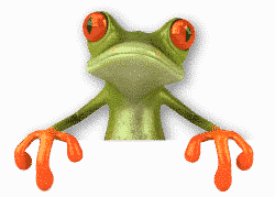 frog-bottom